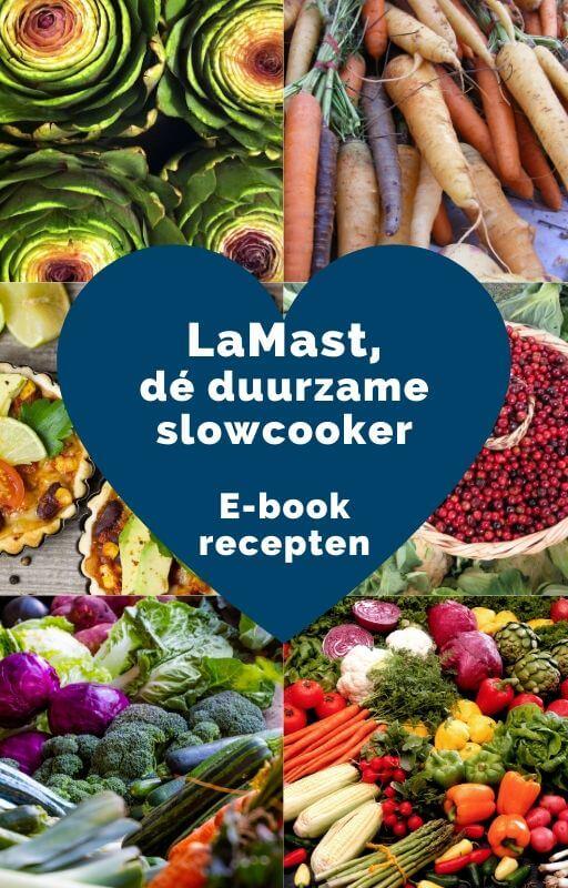 ebook-recepten-lamast